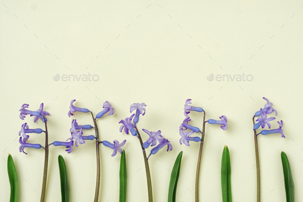 Blue flowers arranged in a row on a yellow background - Stock Photo - Images