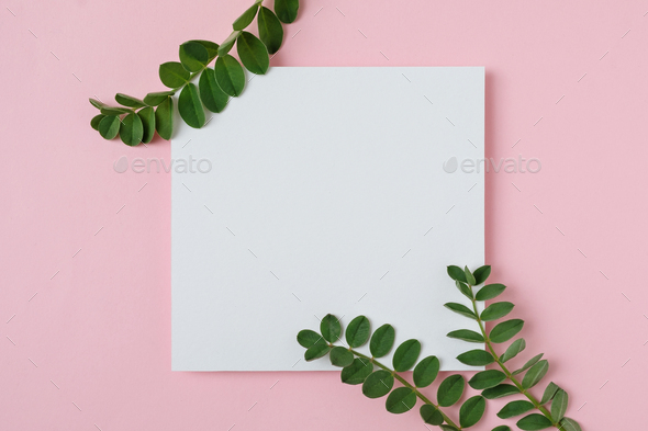 White sheet of paper - Stock Photo - Images