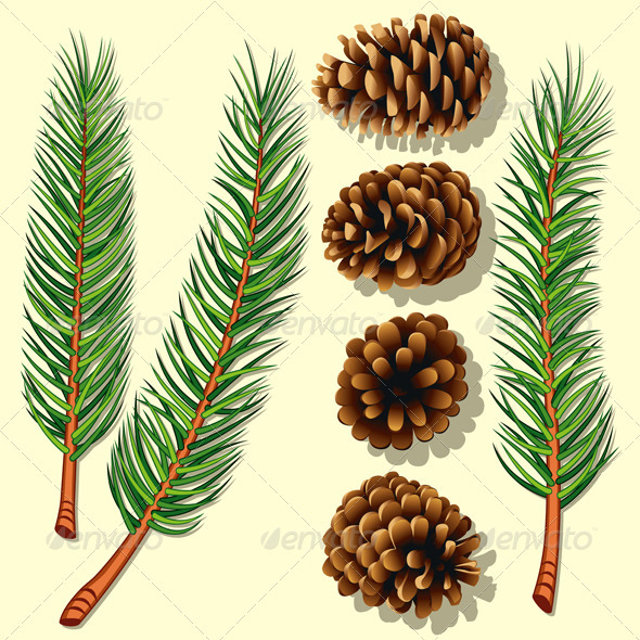 Pine Tree Branches and Cones - Christmas Seasons/Holidays