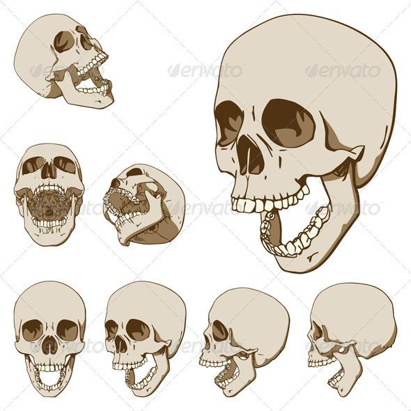 Seven Skulls Set - People Characters