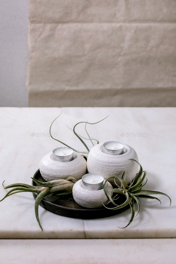 Plant composition with tillandsia air and candle holders - Stock Photo - Images