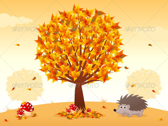 Autumn - Nature Conceptual