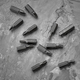 Set of screwdriver bits, concrete background - PhotoDune Item for Sale