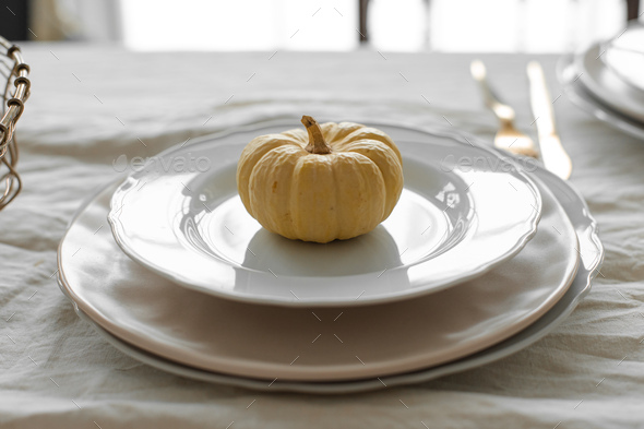 Pumpkin on white plate. Autumnal composition in daylight - Stock Photo - Images