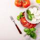 Mozzarella salad over white texture background - PhotoDune Item for Sale