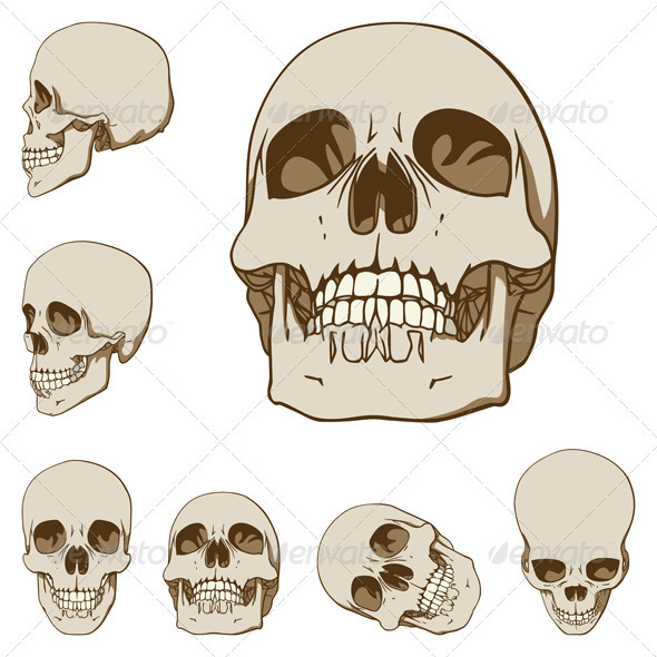 Six Skulls Set - People Characters