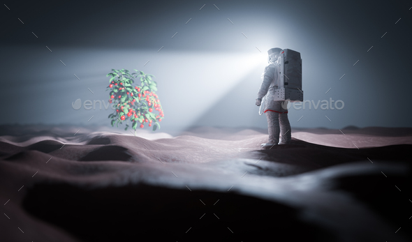 Astronaut discovers green plant on Mars - Stock Photo - Images