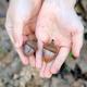 hands of acorns - PhotoDune Item for Sale