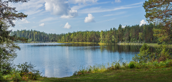 Panoramic view of beautiful forest lake in Russia. - Stock Photo - Images