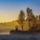 Sunrise misty forest landscape at autumn time. - PhotoDune Item for Sale