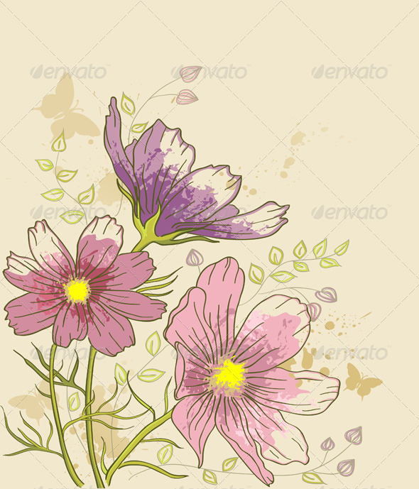 Floral Background with Cosmos Flowers - Flowers & Plants Nature