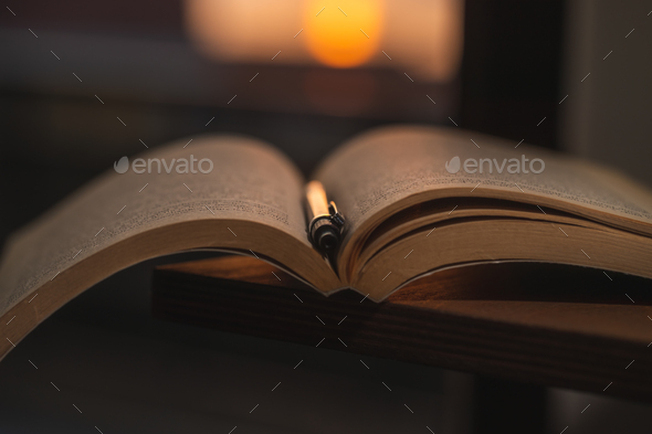 Reading Book at Home - Stock Photo - Images