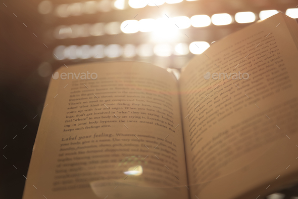 Leisure Time with a Book - Stock Photo - Images