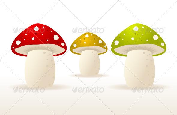 Mushrooms - Nature Conceptual