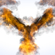 Flaming Eagle Logo Reveal - VideoHive Item for Sale
