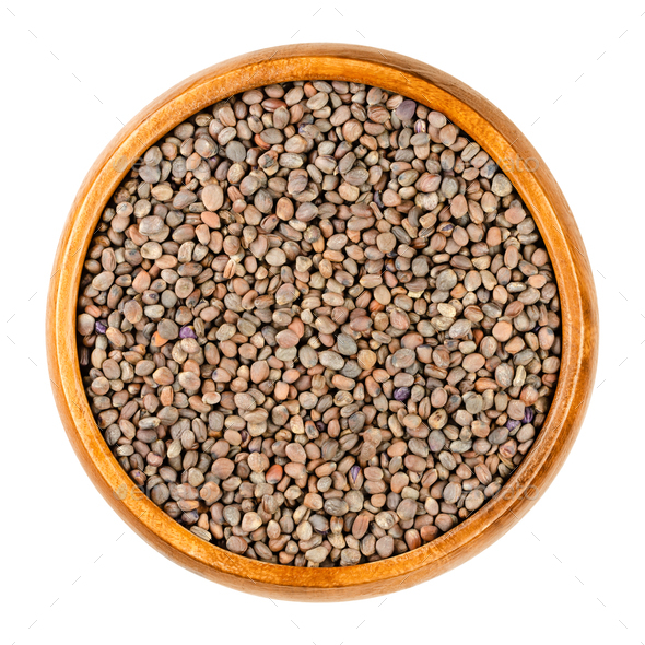 Red radish seeds, seeds for sprouting, Raphanus sativus, in a wooden bowl - Stock Photo - Images
