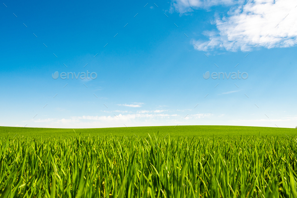 Green hill with dreamy clouds and blue sky in the background. - Stock Photo - Images