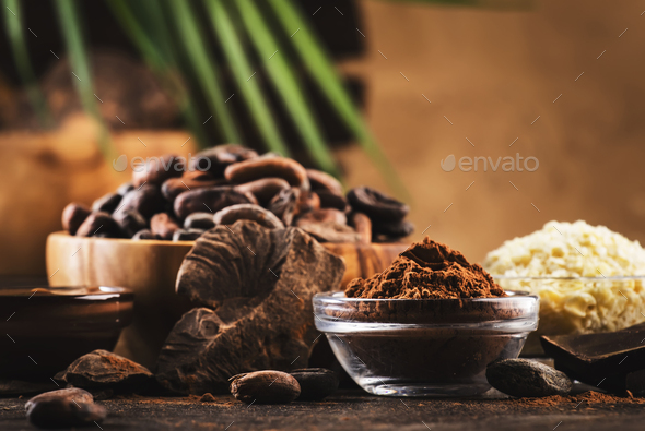 Various cocoa products set - Stock Photo - Images