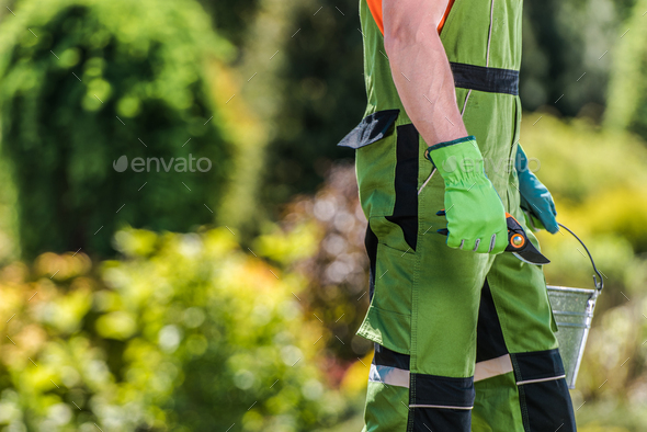 Gardener with Branch Trimming Tool in His Hand - Stock Photo - Images