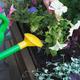 gardener florist plants flowers in wooden container pot - PhotoDune Item for Sale