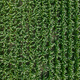 Drone photography, top view of green unripe corn crop field in summer - PhotoDune Item for Sale
