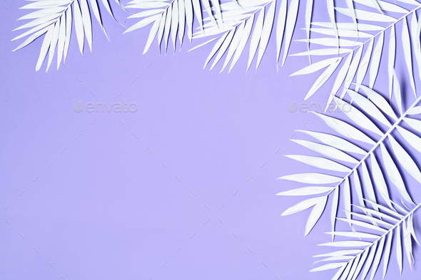 White palm leaves decoration - Stock Photo - Images