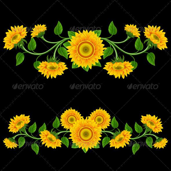 Sunflowers. - Flowers & Plants Nature