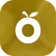 Giop - Organic Food/Fruit/Vegetables eCommerce Shopify Theme