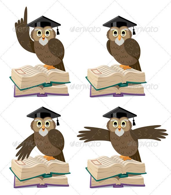 Owl 2 - Characters Vectors