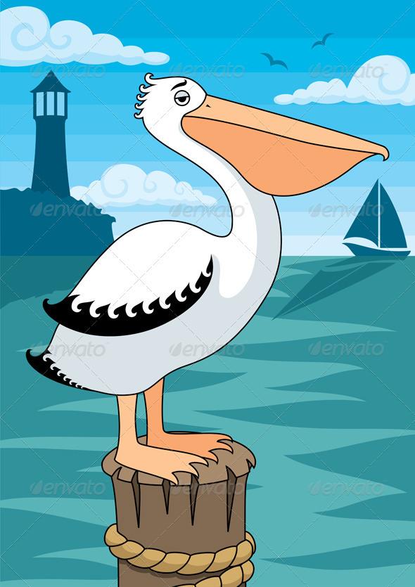 Pelican - Animals Characters