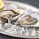 Oysters with fresh lemon - PhotoDune Item for Sale