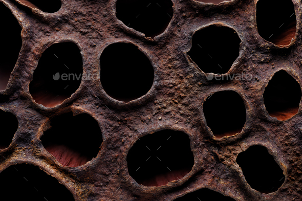 Surface of dried lotus seed box - Stock Photo - Images