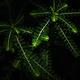 green leaves in the dark - PhotoDune Item for Sale