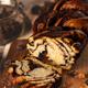 Swirl brioche or chocolate braided bread - PhotoDune Item for Sale