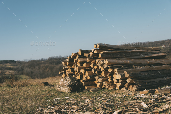 Wooden logs - Stock Photo - Images