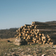 Wooden logs - PhotoDune Item for Sale