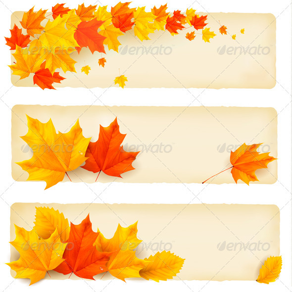 Three autumn banners with colorful leaves  Vector  - Flowers & Plants Nature