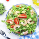 Summer shrimp salad with tomatoes, lettuce, arugula, avocado, cucumber - PhotoDune Item for Sale