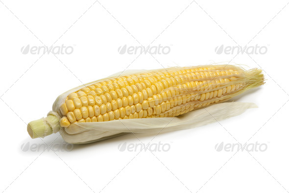 Whole Fresh yellow sweet corn on the cob - Stock Photo - Images
