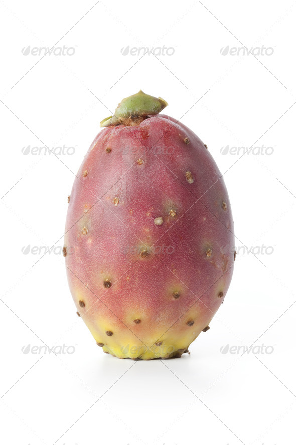 Single fresh Indian Fig Opuntia - Stock Photo - Images