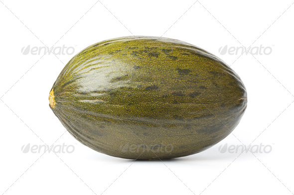 Whole single  Piel de sapo melon - Stock Photo - Images