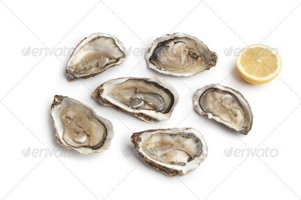 Fresh raw oysters in an open shell - Stock Photo - Images