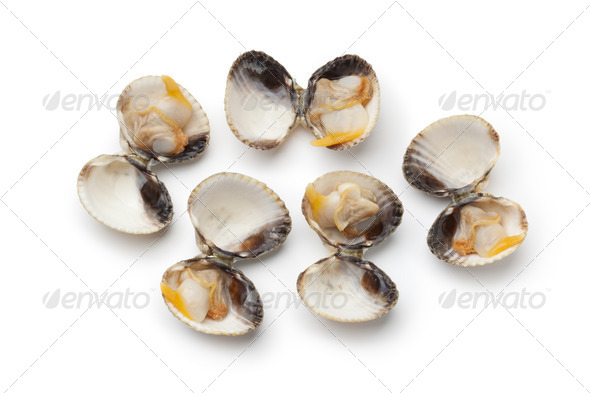 Fresh cooked cockles in the shell - Stock Photo - Images
