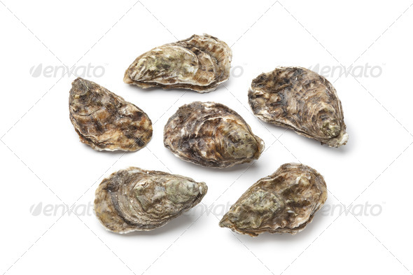 Whole fresh raw oysters - Stock Photo - Images