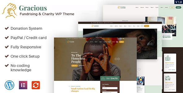 Gracious - Charity and Donation WordPress Theme