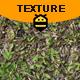 Grass Surface
