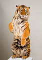 Tiger standing up - PhotoDune Item for Sale