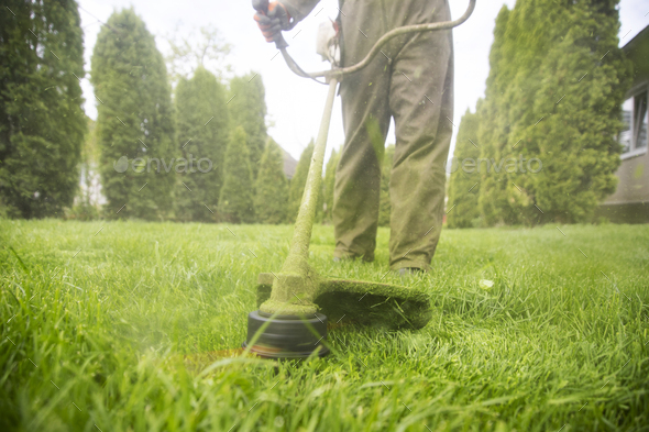 Lawn mover on green grass. Machine for cutting lawns. - Stock Photo - Images