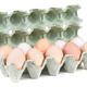 Eggs in carton box - PhotoDune Item for Sale