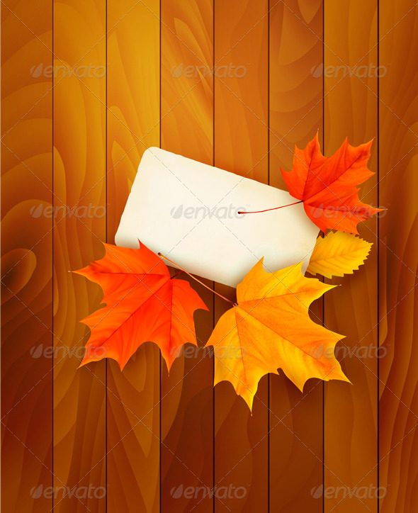 Card with leaves on wooden background. Vector. - Seasons Nature
